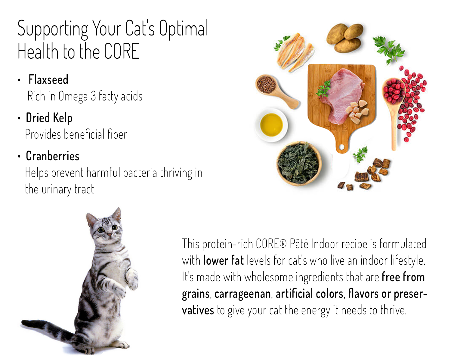 Wellness Core Indoor Cat Food Calories