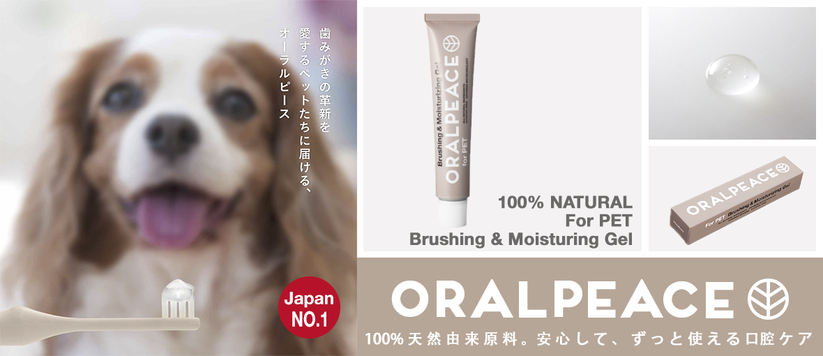 oralpeace toothpaste banner